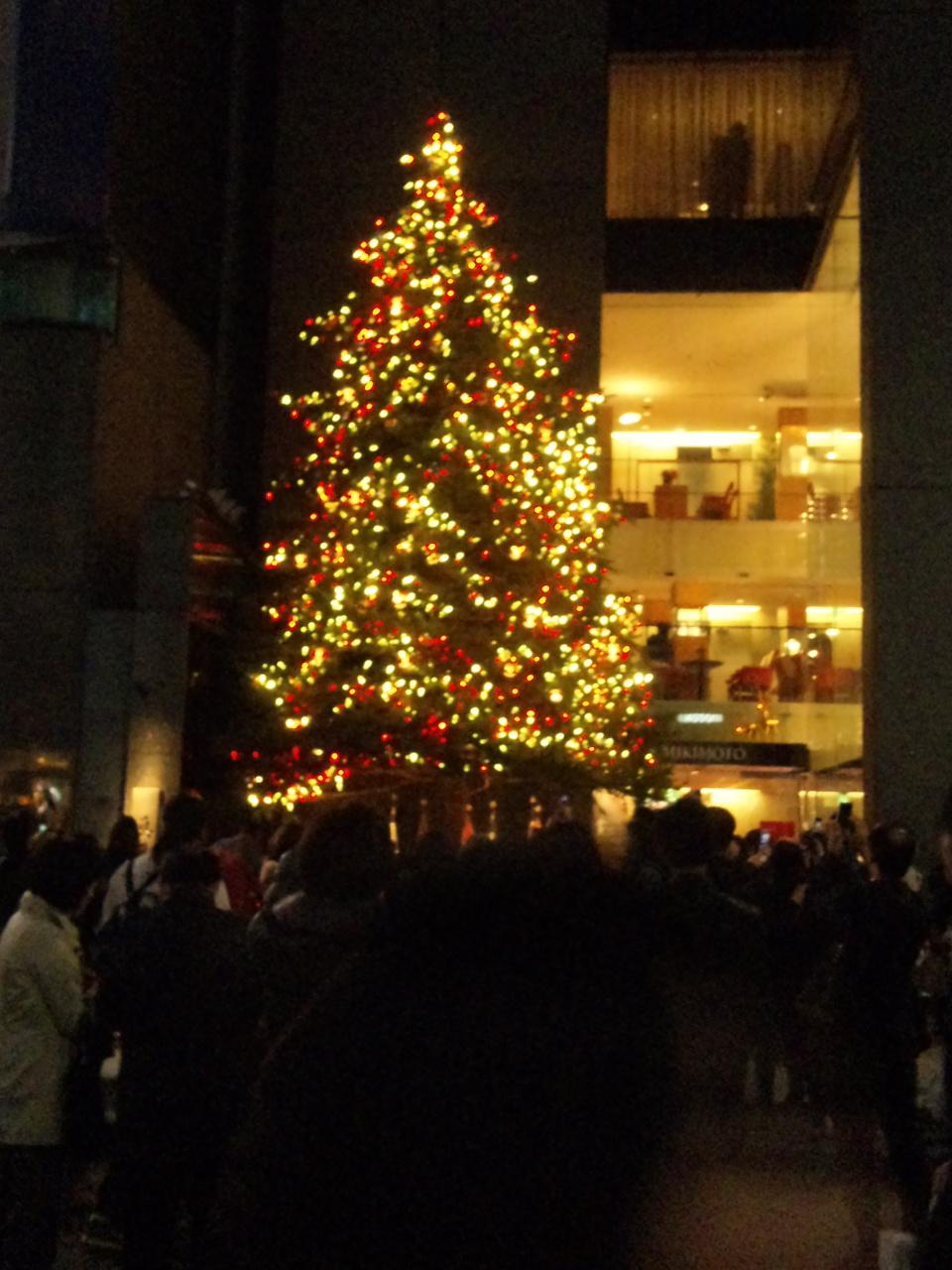 銀座ミキモトのクリスマスツリー